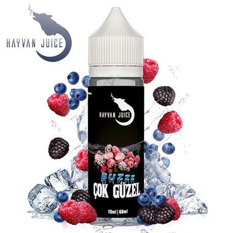 Hayvan Juice - Cok Güzel Aroma